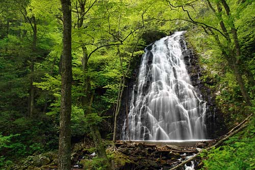 Image located at http://www.ncwaterfalls.com/crabtree1.htm