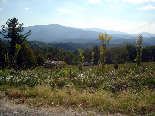 Photo - view from road