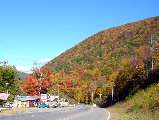 Photo - fall colors at Soco Gap