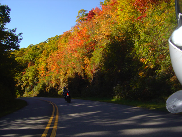 Photo - blue ridge Parkway fall leaf on motorcycle