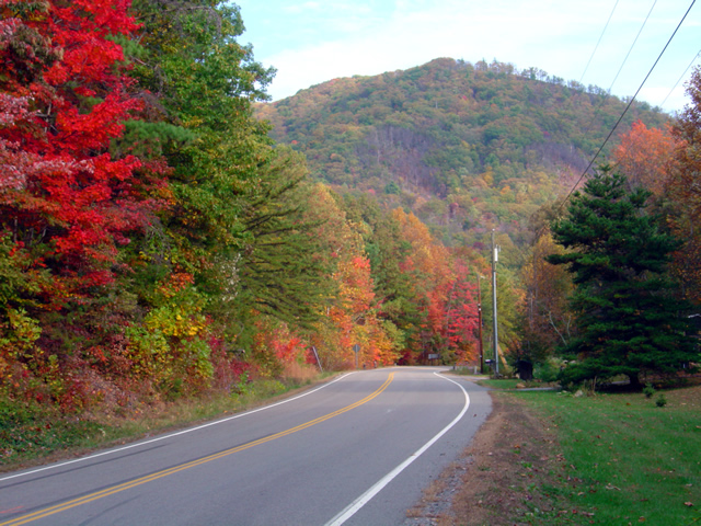 Photo - Fall leaves on The Snake - US 421