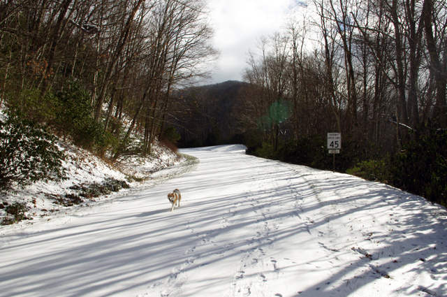 Photo - snow on the Blue Ridge Parkway