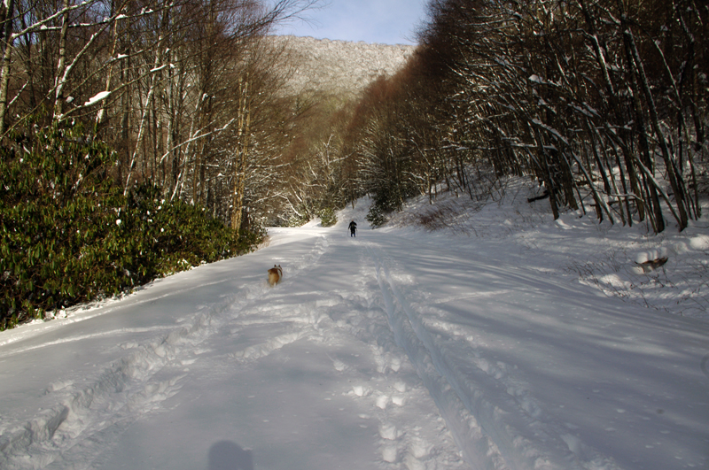 Photo-skiing-on-the-Blue-Ridge-Parkway