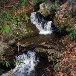 Photo - waterfall along Buck Springs Trail