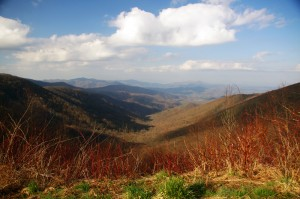 Photo - morning on the Cherohala Skway