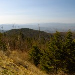 Photo - view from Clingman's Dome