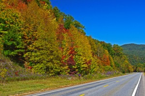 photo-fall-view-us-64