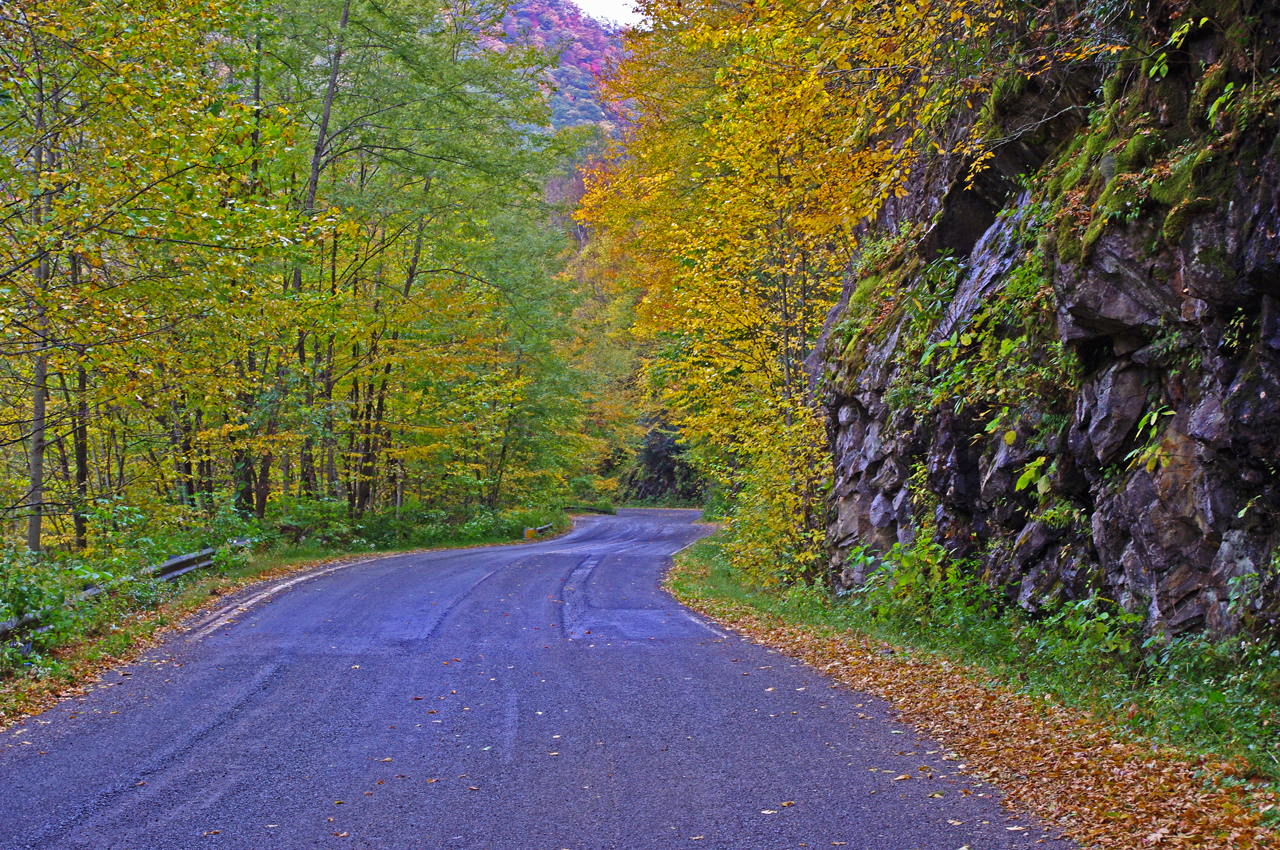 photo-fall-on-nc215-great-motorcycle-ride