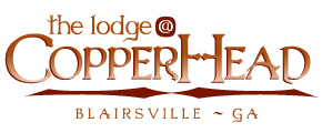 The Lodge at Copperhead - Blairsville, GA