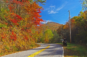 Ellijay Road - beautiful and fun!